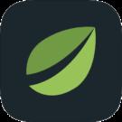 Bitfinex App Review